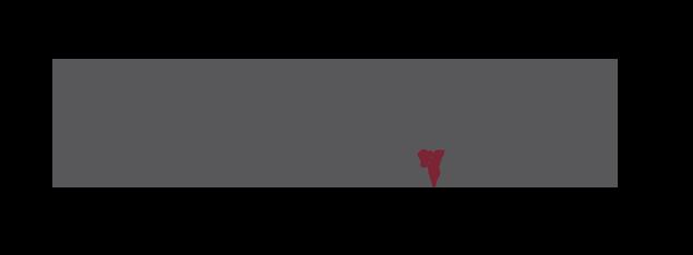 mavv-channel